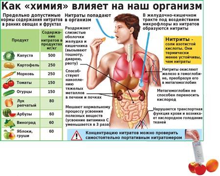 Нормы нитратов. Как химия влияет на организм.