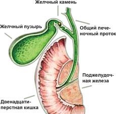Лечение поджелудочной железы в Красноярске